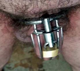 rsz_cyqezxgwkaa9dy5_1miss-gail-locked-cock.jpg